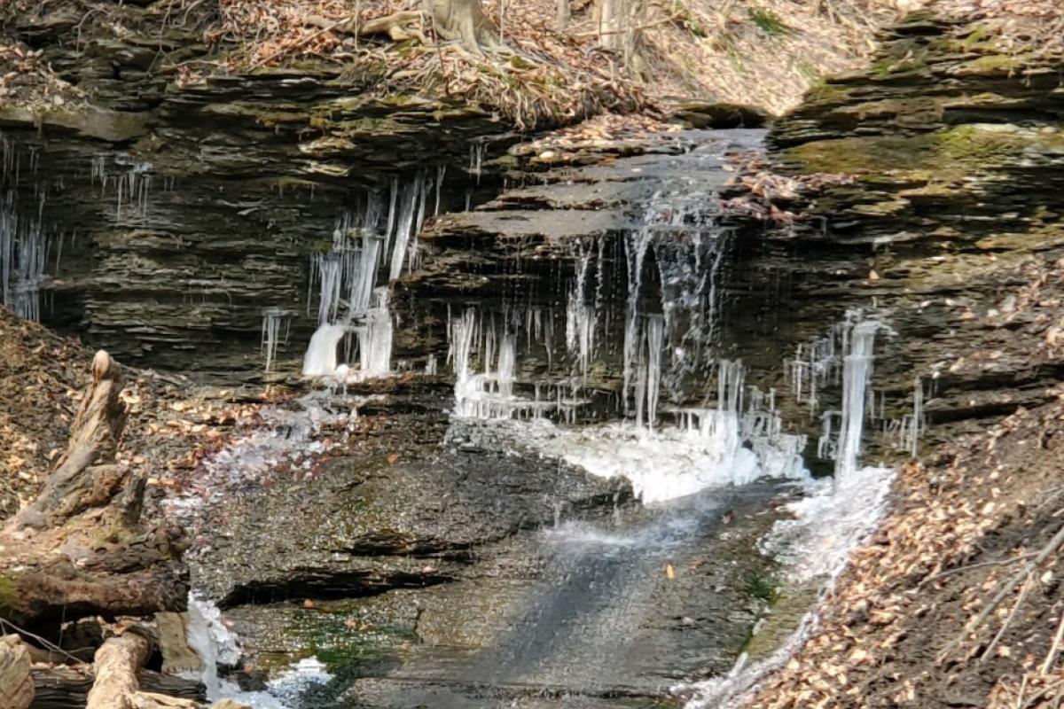 Waterfall at Hardie Valley Park