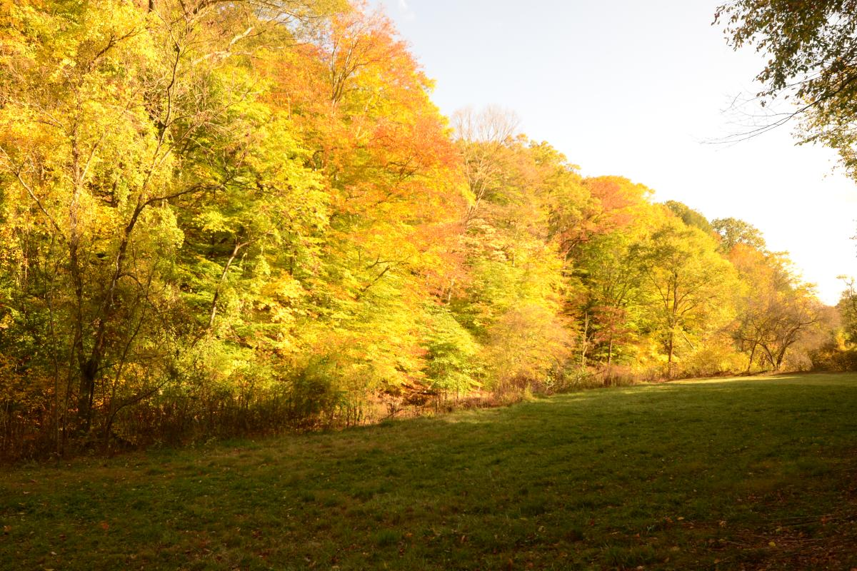 Hardie Valley Park in the fall. Photo provided by Jack Wolf
